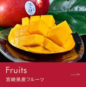 Fruit 宮崎県産フルーツ